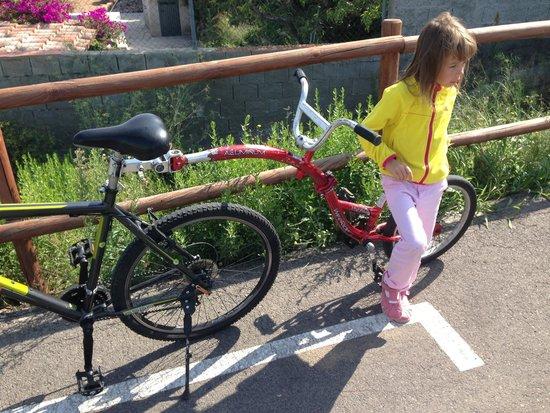 Salou Downhill Bikes : Наш вариант Детского прицепа