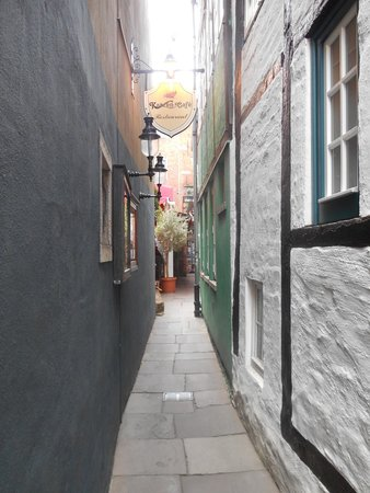 Katzen-Cafe: The alleyway leading to the café