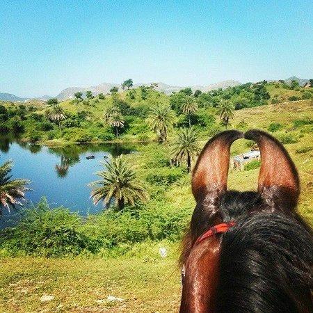 Princess Trails Farm: Stunning views over the lake