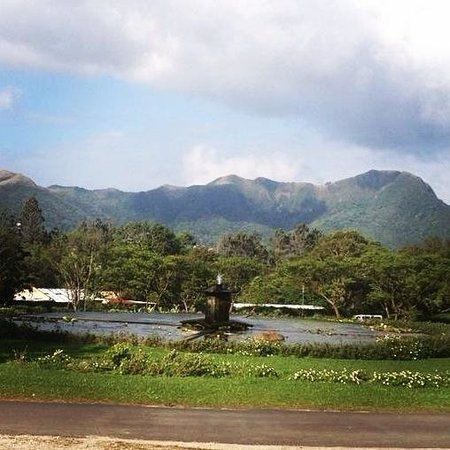 Hotel Campestre: The view from the restaurant! Perfect for a peaceful breakfast.