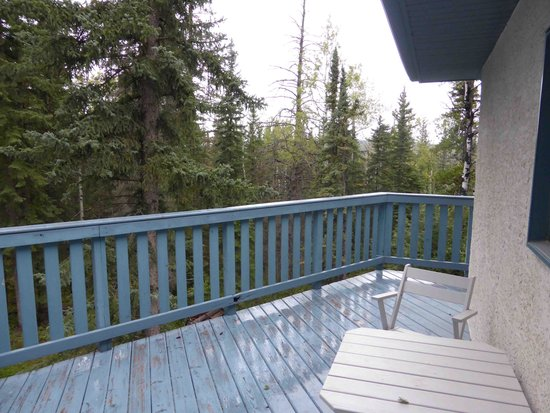 Flying Dog Bed and Breakfast : Deck