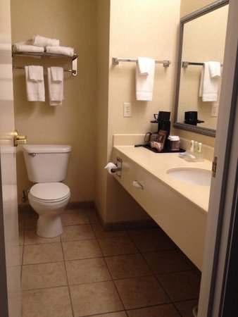 Country Inn & Suites By Carlson, Salisbury: clean, decent sized bathroom