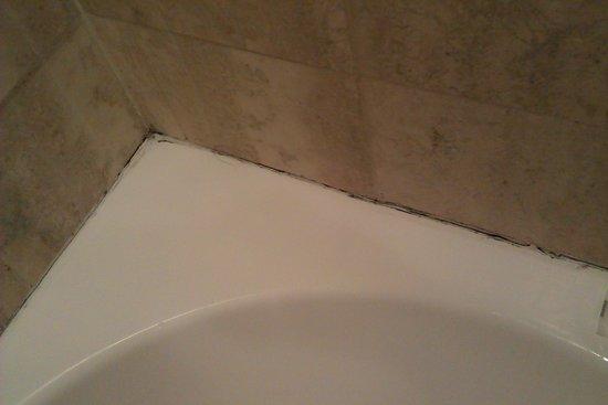 Il Gattopardo Relais : the mould in the tub
