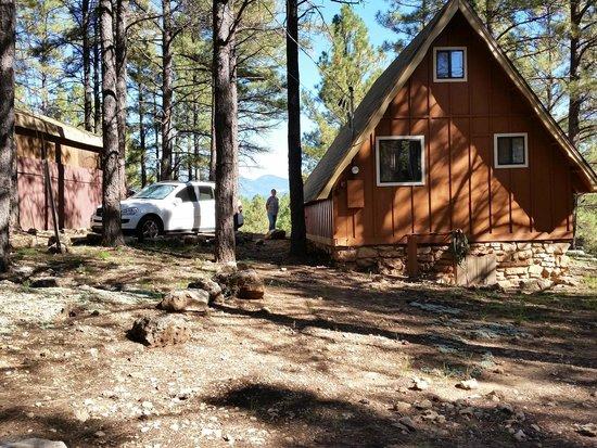 Arizona Mountain Inn & Cabins: The back of Cabin #6.