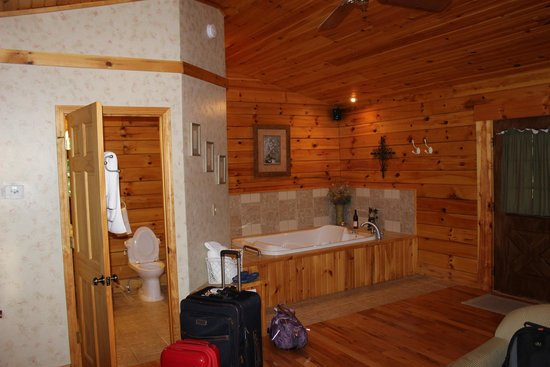 Cripple Creek Bed and Breakfast Cabins: AWESOME TUB!