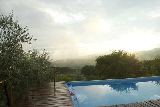 Farmhouse Olmo B & B: View from the pool