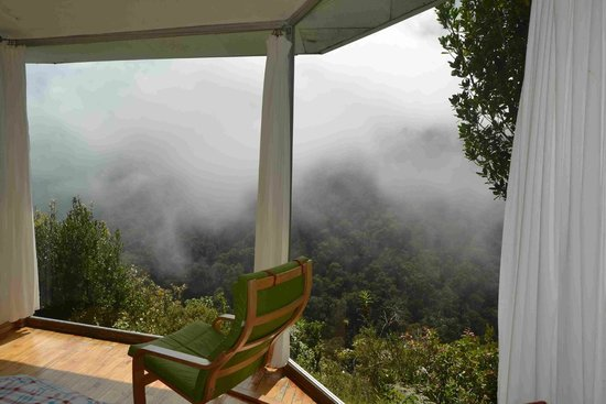 Dantica Cloud Forest Lodge: Flotar sobre el bosque y las nubes