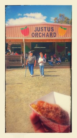 Justus Orchard: Apples and doughnuts