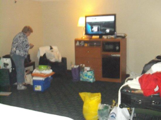 Fairfield Inn & Suites Frankenmuth : tv, sofa, microwave, mini fridge