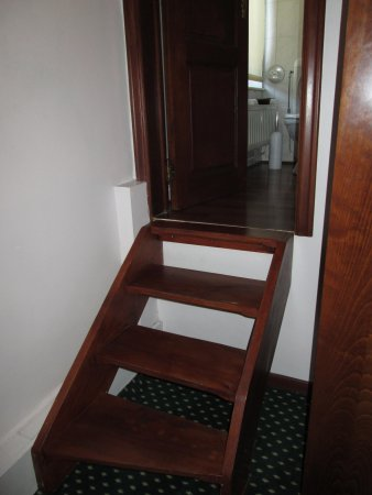 Hotel Le Monte Cristo: steps to loo