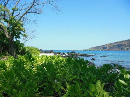 Kealakekua Bay : Out to sea looking westward