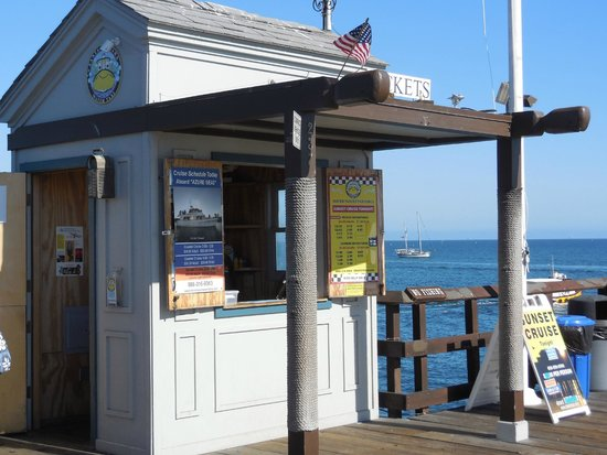 Celebration Cruises of Santa Barbara day trips: Their Ticket Office