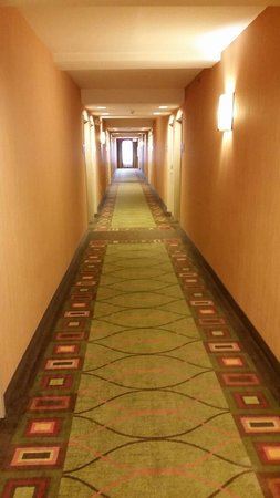 Hampton Inn Chattanooga-North/Ooltewah : View down a hall.