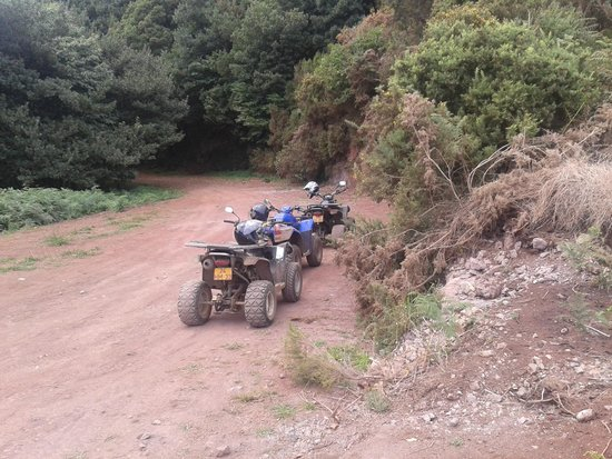 Lokoloko - Mountain Bike & Outdoor Tours: Parked quads on forest trail