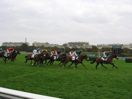 Hippodrome d'Auteuil : Racing by the grandstands, the Eiffle tower in the distance