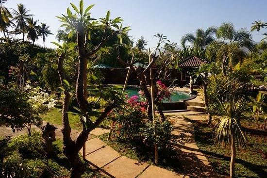 Hotel Sartaya: jardin et piscine