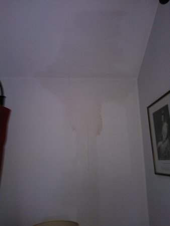 The Royal Hotel: Water damage on wall by the bed