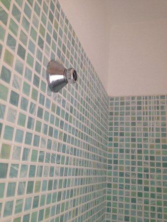 Villa Esperia: Porta doccia rotto