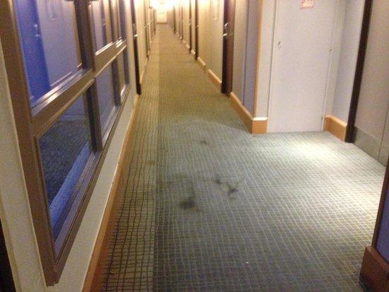 Novotel Marseille Est: Moquette couloirs légèrement sale