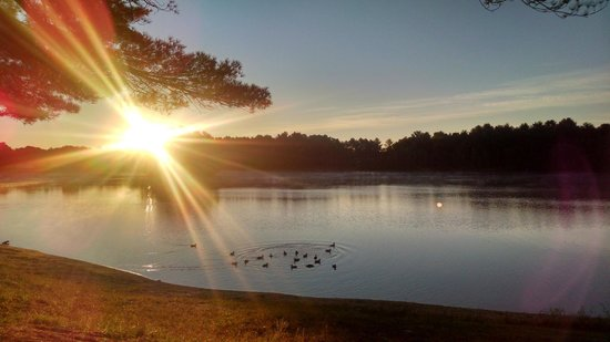 Wassamki Springs Campground: Sun rising over the lake at the back of our site