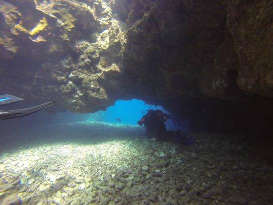 Waikoloa Coast Divers : Unique dive sites