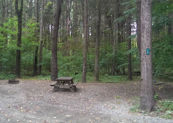 ‪‪Taconic State Park Campgrounds‬: An average campsite on loop C‬