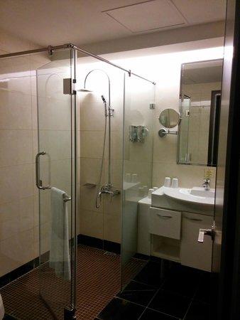 Fullon Hotel Linkou : Shower stall