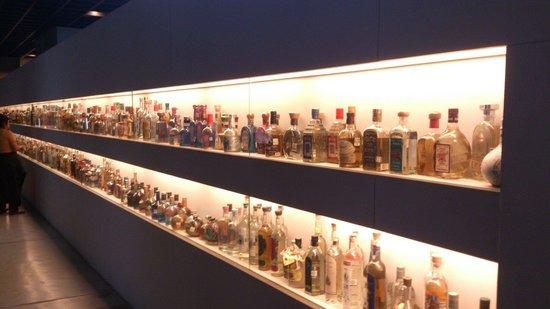 Museo del Tequila y el Mezcal: Over 1000 Tequila