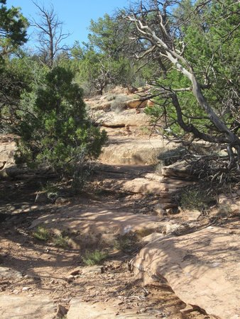 Spider Rock Campground : Trail is well-marked and easy hiking