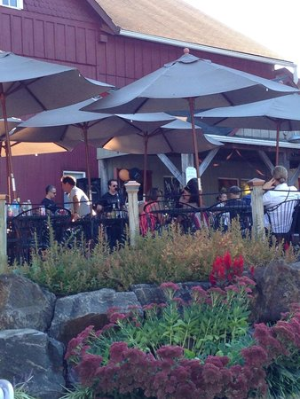 Chaddsford Winery: Special days have music on the patio