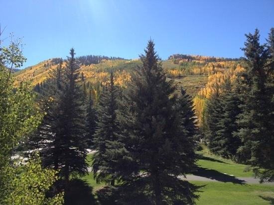 Tivoli Lodge: view from the room