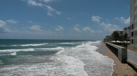 Palm Beach Oceanfront Inn: vista do deck da piscina