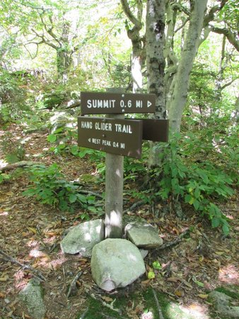 Mount Ascutney: Trail Signs
