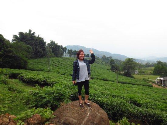 Footprint Vietnam Travel Day Tours : And green tea!