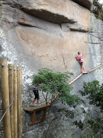 nice walls of sandstone to clamber on picture of trees adventure