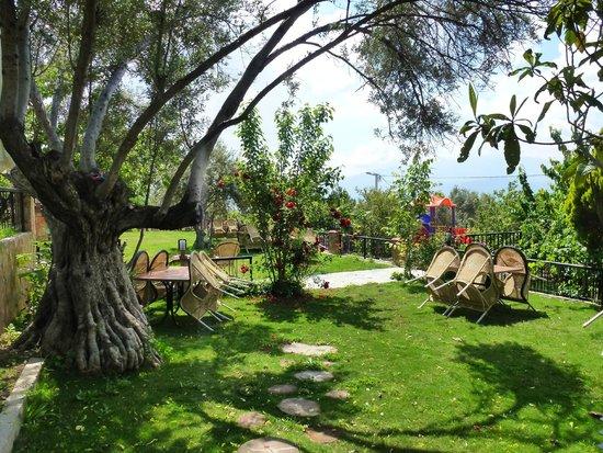 CamaltI Garden Life: Bahçemiz