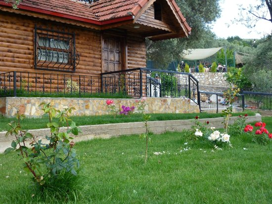 Attrayant CamaltI Garden Life: Bungalow