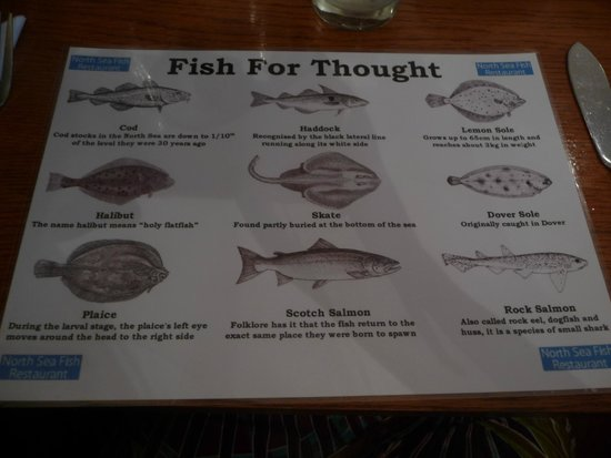 North Sea Fish Restaurant: Le set sous votre assiette. De quoi réviser le nom des poissons