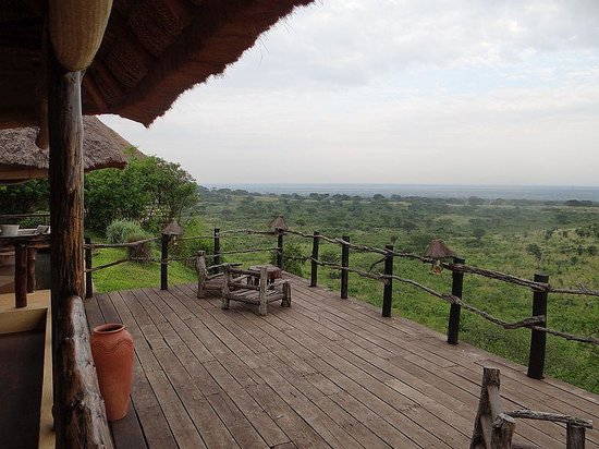 Kyambura Game Lodge: View from the balcony/restaurant overlooking the plains with buffaloes, elephants and kobs