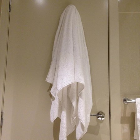 Atlantis Hotel: One hook on the back of the bathroom door...