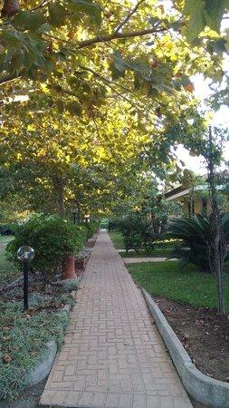 Villaggio Selene Mare: viale