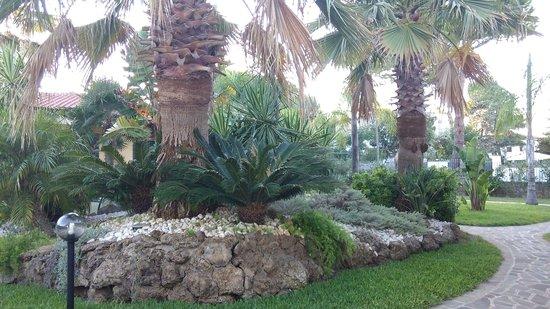 Villaggio Selene Mare: giardino