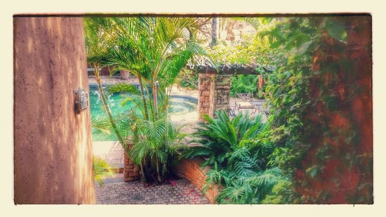 Terra Casa: Awesome garden with pool