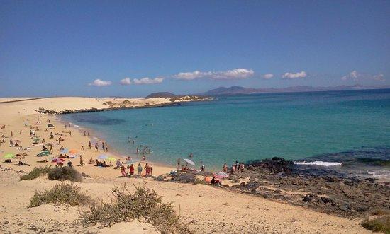 Elba Carlota Beach and Convention Resort: Spiaggia nel parco naturale del Coralejo le grandi dune