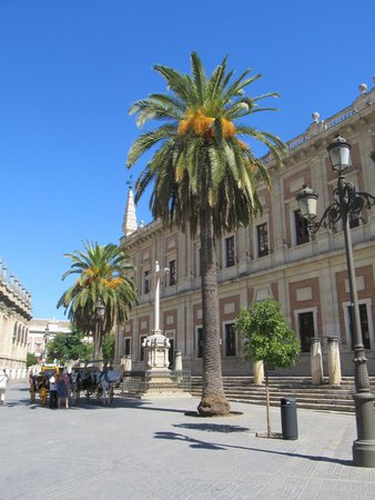 Archivo General de Indias: Great spot with the palm trees