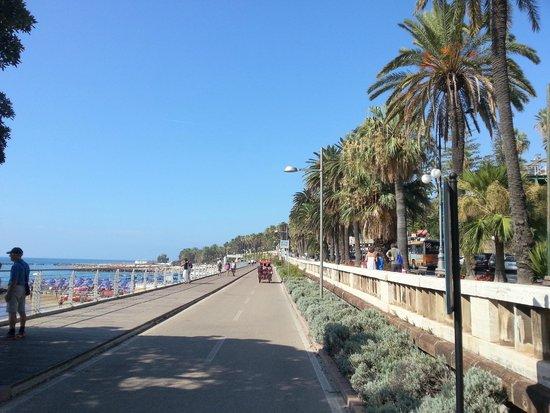 Lolli Palace Hotel : велодорожка и пляж напротив отеля