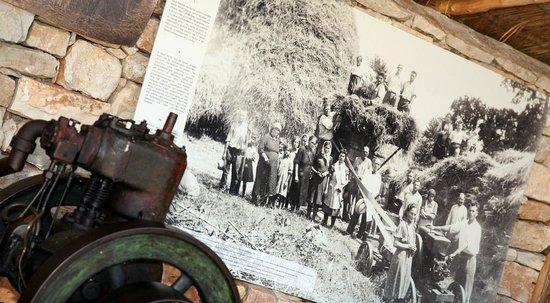 Nova Vas, Croatia: Traktor Story