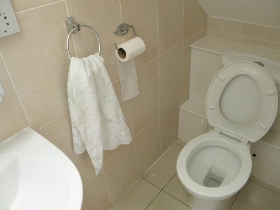 FlexiStay Aparthotel Tooting London: WC