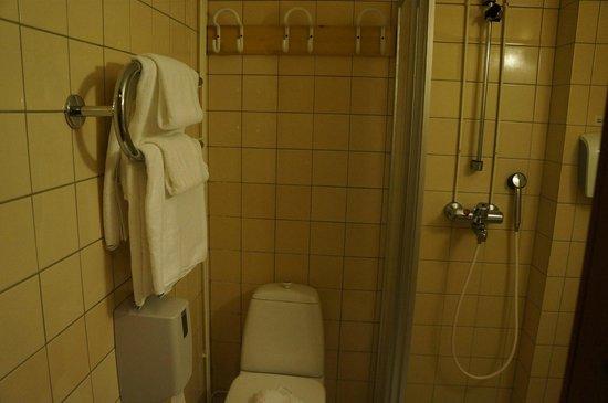 Santa's Hotel Tunturi : バスルーム
