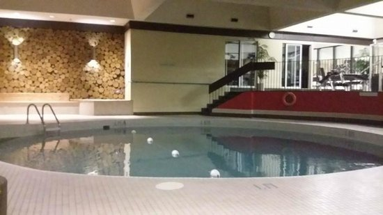 Ramada Plaza Regina Downtown: pool